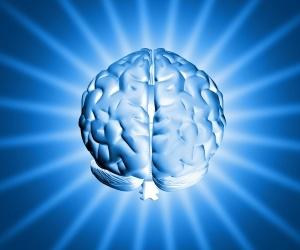 "Kineziológia One Brain, ""Egy agy"" módszer"